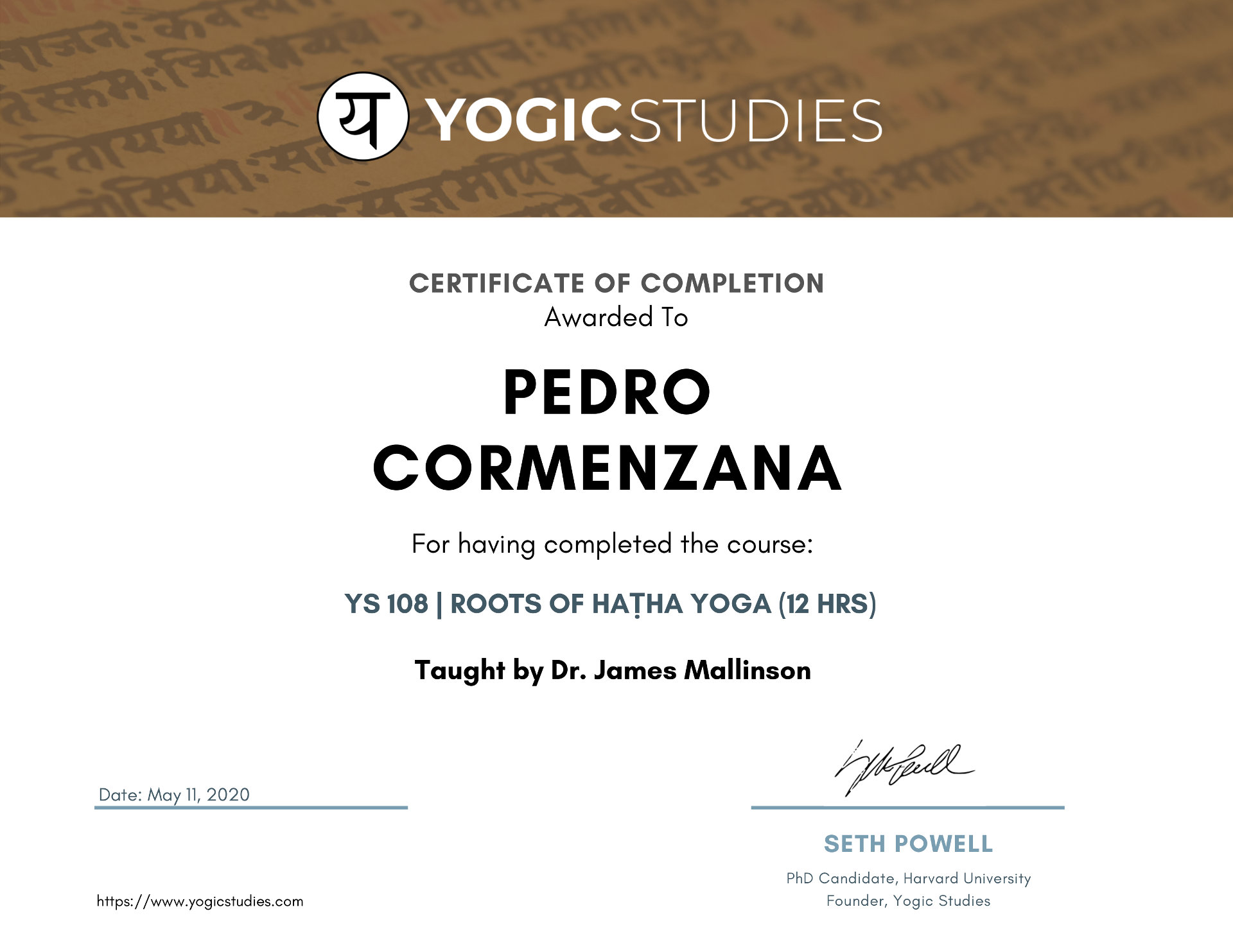 YS 108 Roots of hatha yoga
